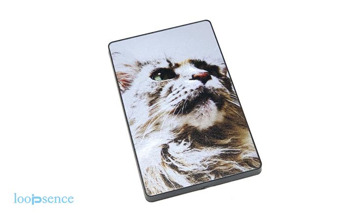 猫のオリジナルスライドカードミラーNo.1